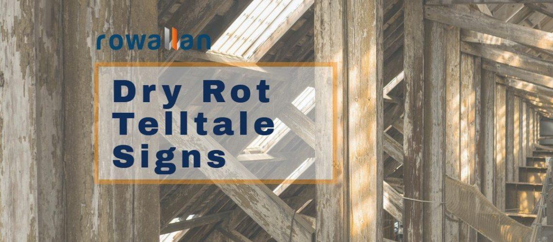 Dry Rot Telltale Signs